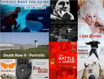 festival-do-rio-2013_os-documentarios